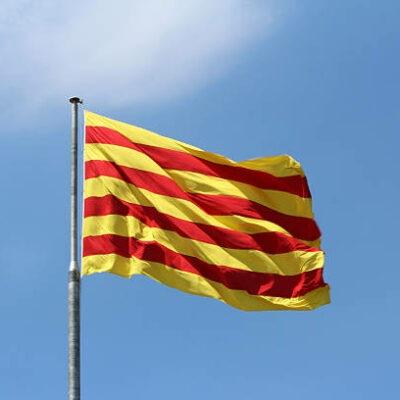 Ergebnisse der Wahlen in Katalonien 2021 1